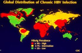 HBV global distribution